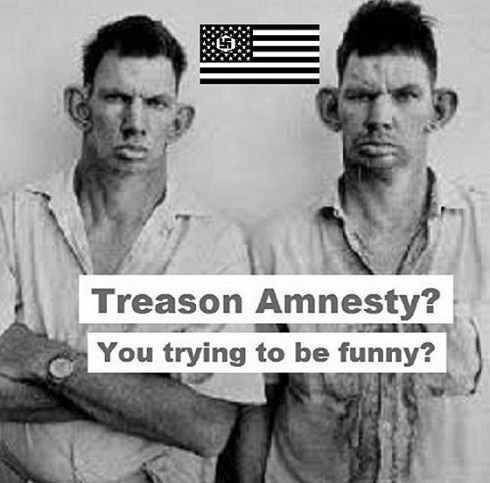 American Nazi treason amnesty 490 (4)