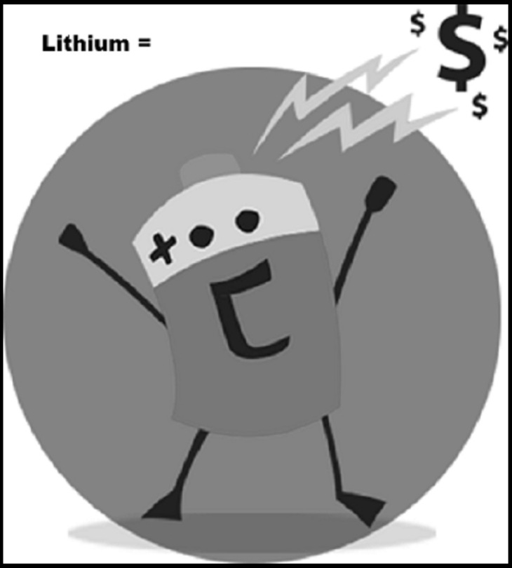 Lithium battery BW 800