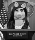 Miss Piggy Sarah White House BW 490
