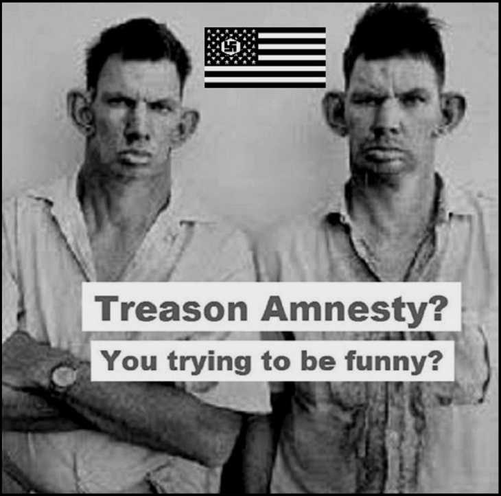 Treason amnesty inbred hillbilly darker 1000