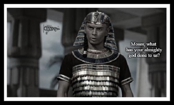 MOSES PHAROAH CESSNA 560