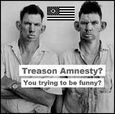 Amnesty twins 490 BW 490