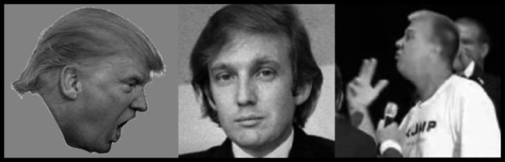 Trump and two fakes LARGE