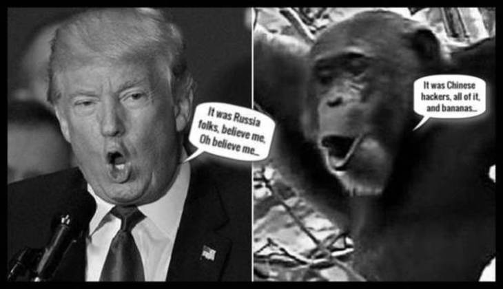 Trump monkey bananas Russian Chinese LARGE