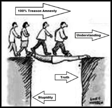 amnesty understanding stupidity treason 600