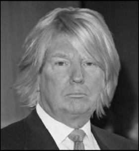 Fake Trump hair