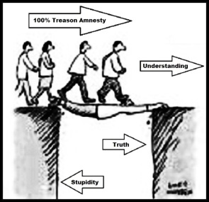 amnesty-understanding-stupidity-treason-clearer-large