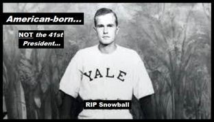 Bush RIP Snowball 560