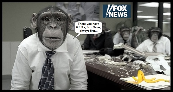 Monkey Ape Fox News always first 600