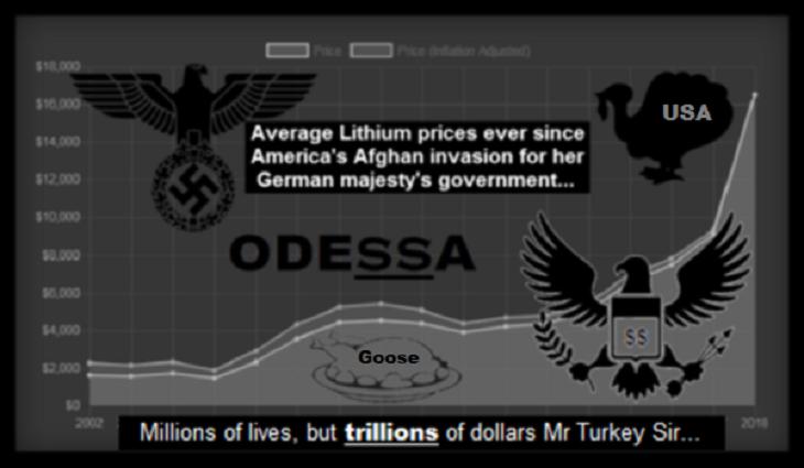 odessa-USA Turker afghan-lithium- goose 730