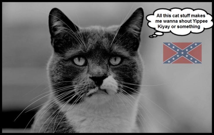 Yippee Ki Yay Confederate Cat CAT STUFF