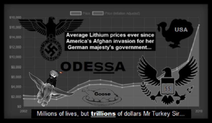 odessa-USA Turkey afghan-lithium-DUMBO goose 730