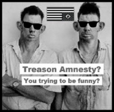 Treason Amnesty inbreds sunglasses BORDER 480